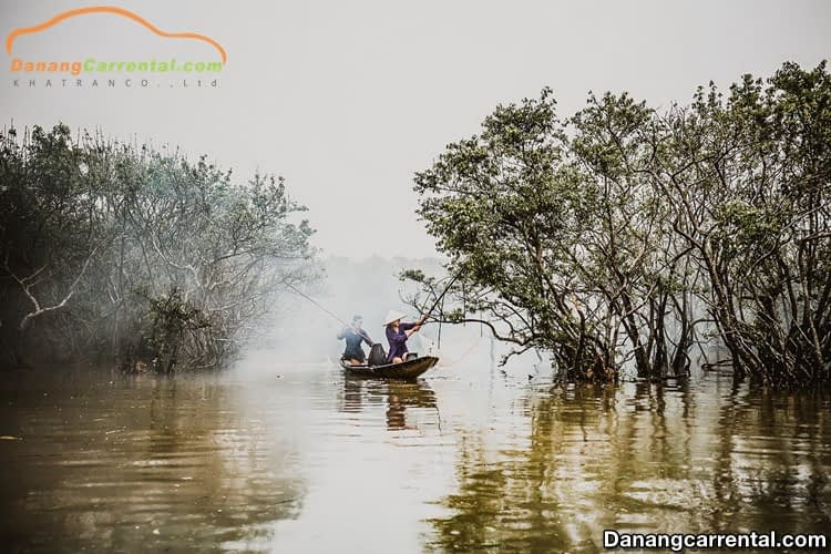 Ru Cha mangrove forest Hue